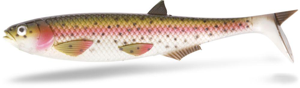 rainbow trout Yolo Pike Shad